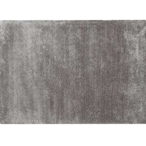 Szőnyeg, világosszürke, 200x300, TIANNA